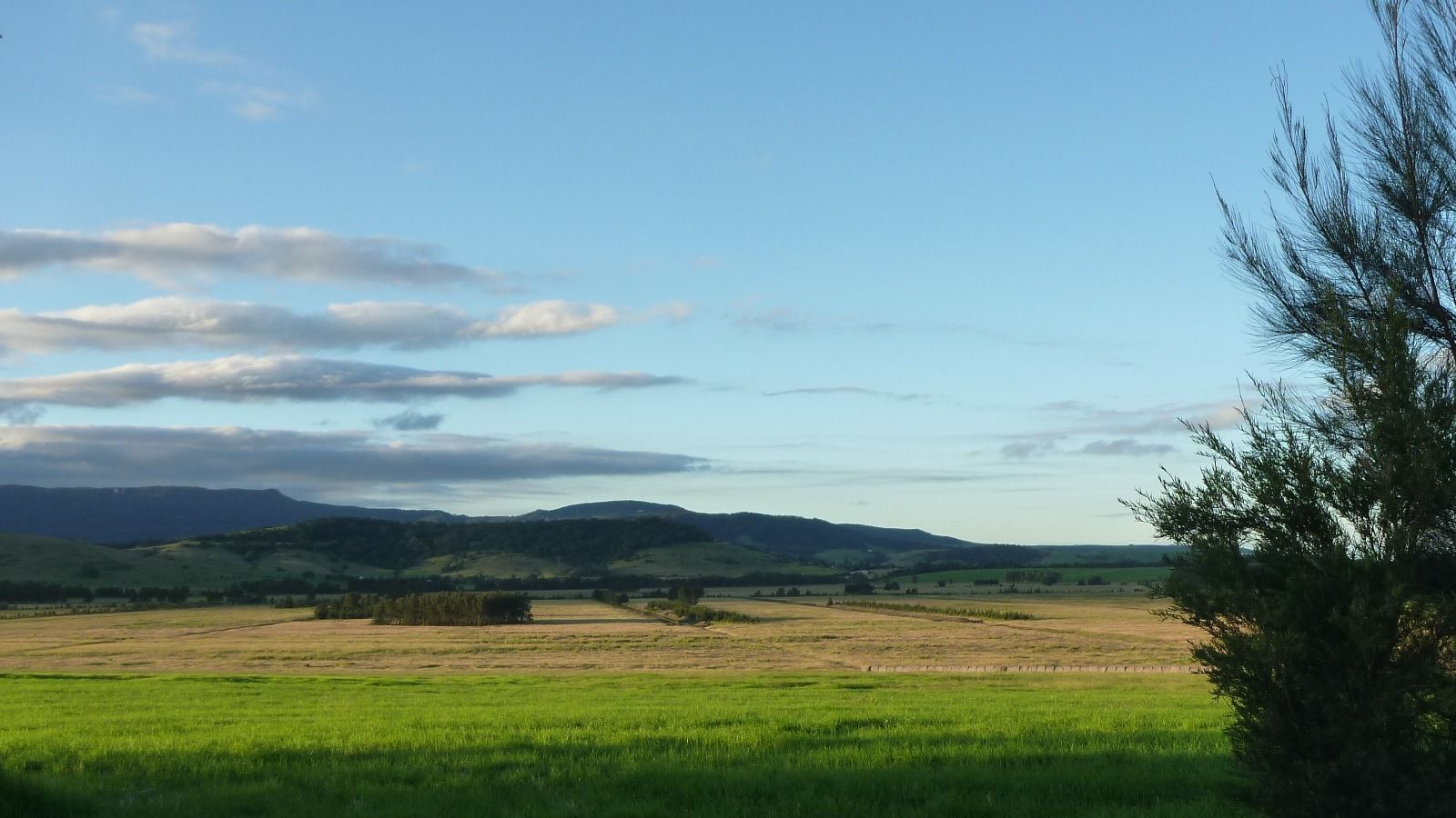Rural landscape with rolling hills in the background banner image