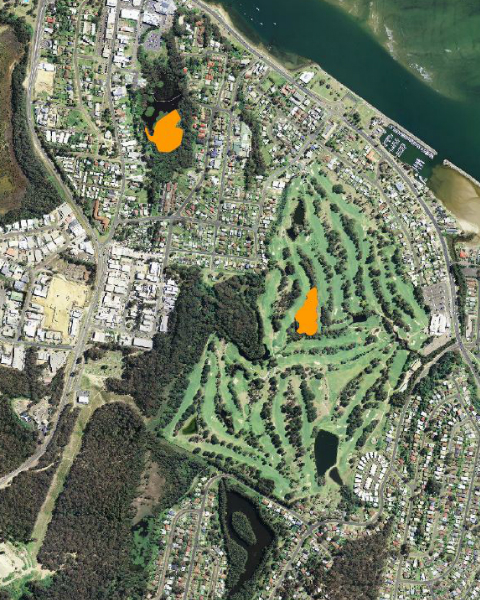 Clock to open a larger image of the map showing the extent of the flying-fox camps in May 2019 at Batemans Bay