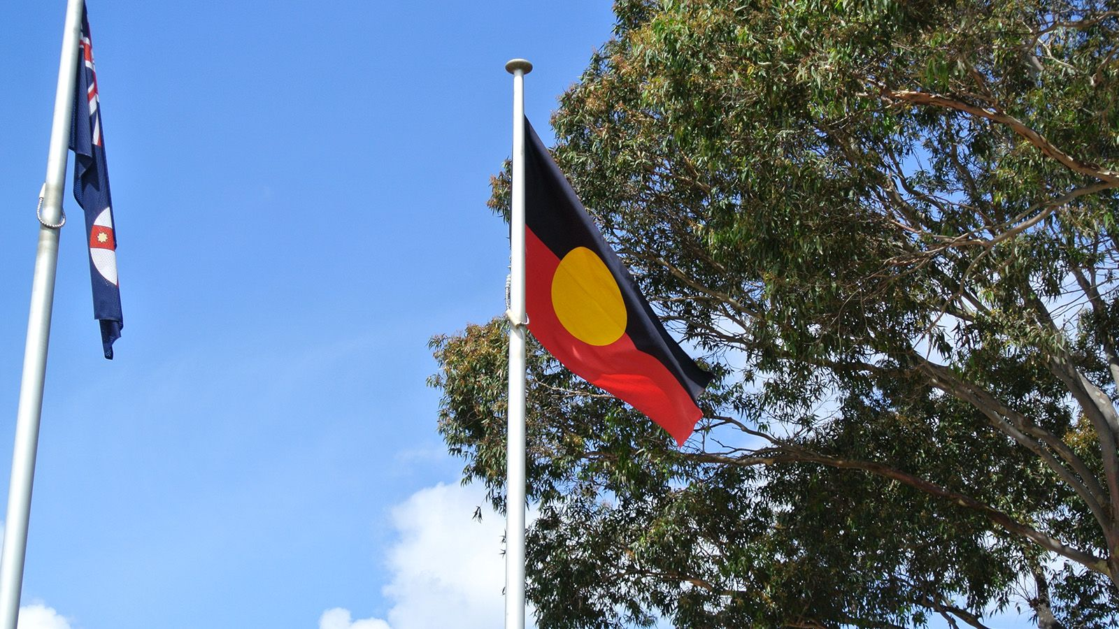 The Aboriginal Flag raised on a flagpole banner image