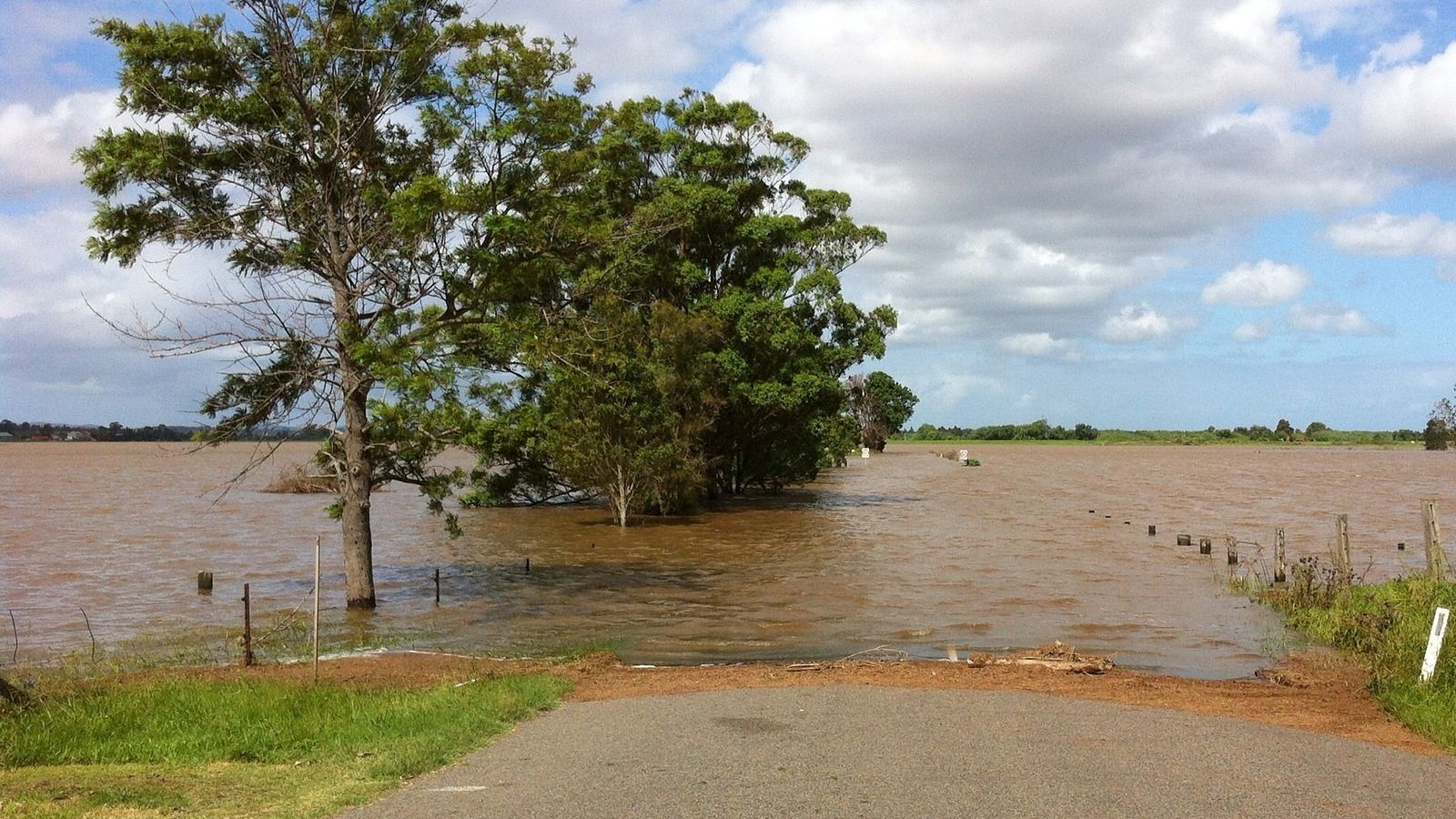 Flooded rural road with a line of trees along the road banner image