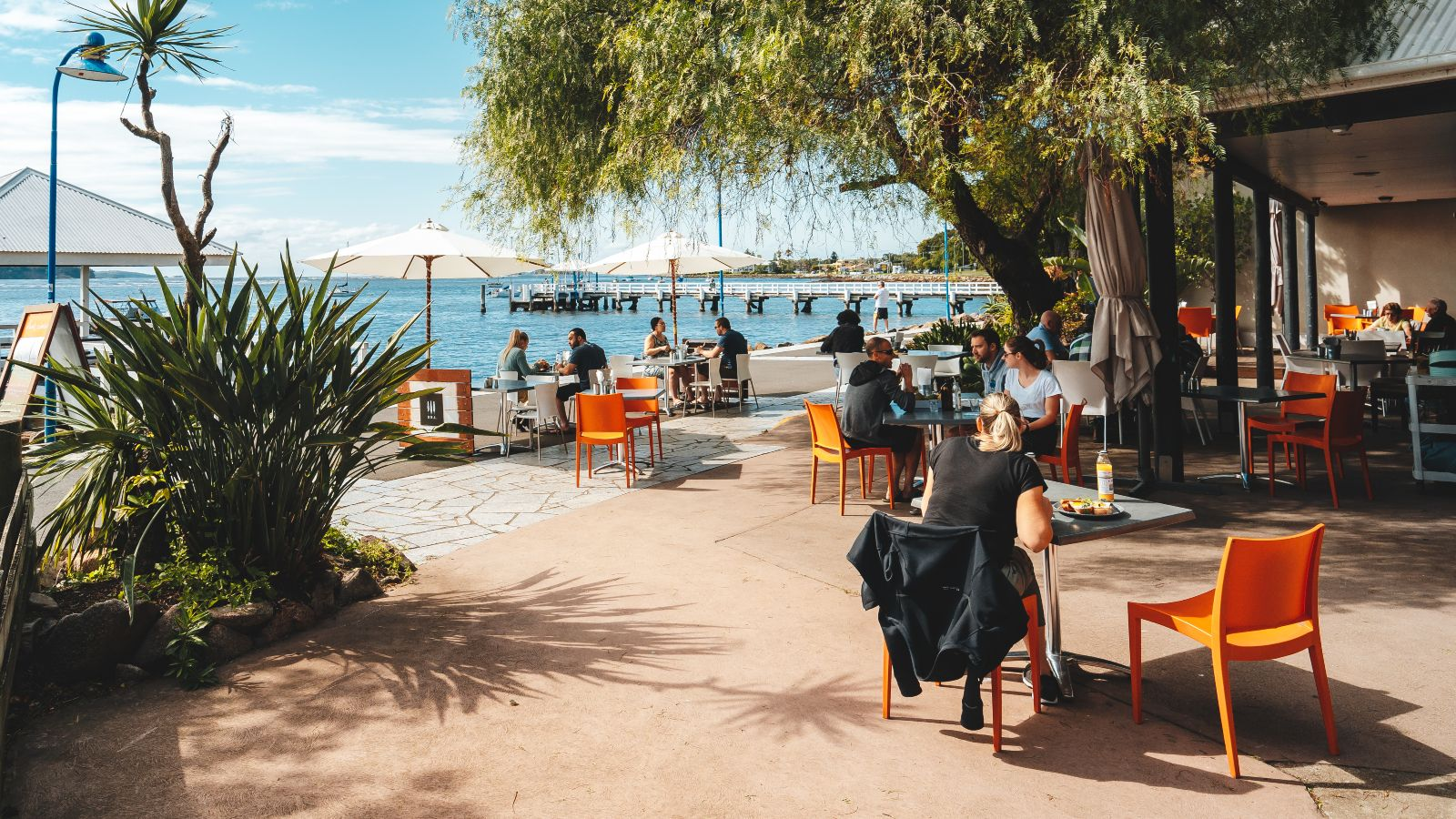 People dining in cafe on the waterfront with overhanging tree banner image