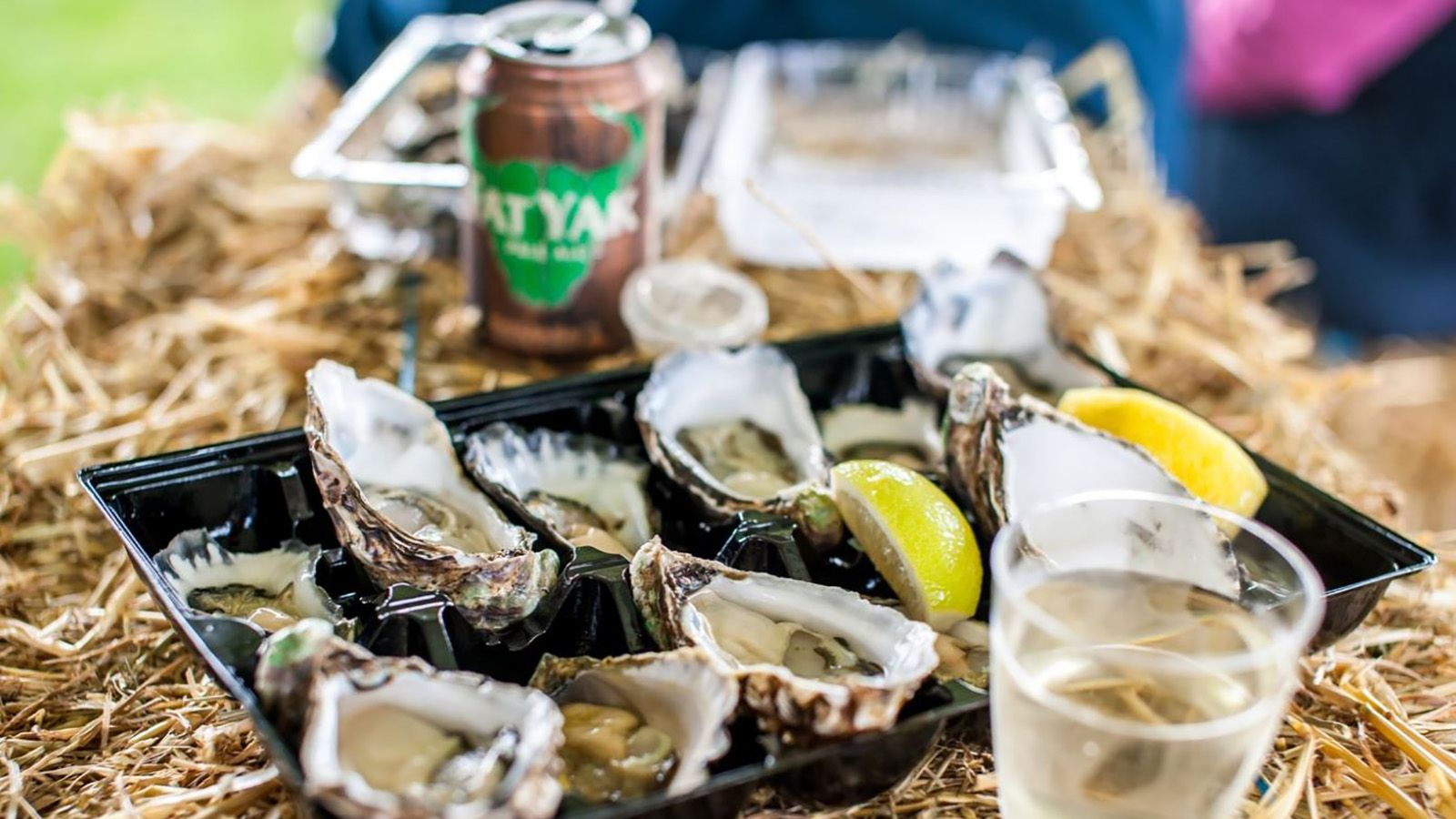 Close up photograph of Batemans Bay oysters with lemon slices banner image