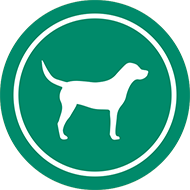 Dogs allowed 24 hour off leash