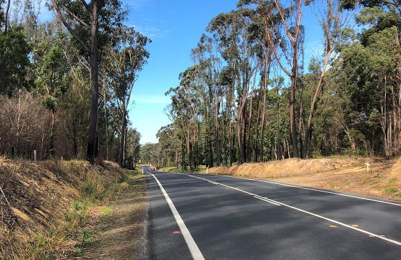 A straight stretch of bitumen road undulates through a forest