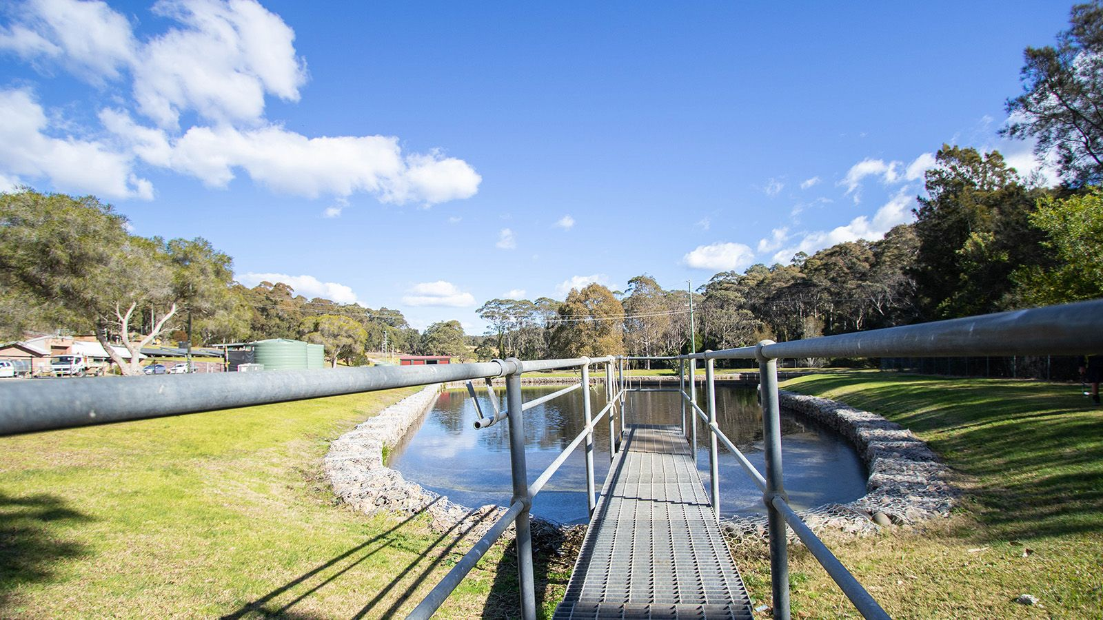 A plank raised across a collection pond at a Eurobodalla Council sewage treatment facility banner image