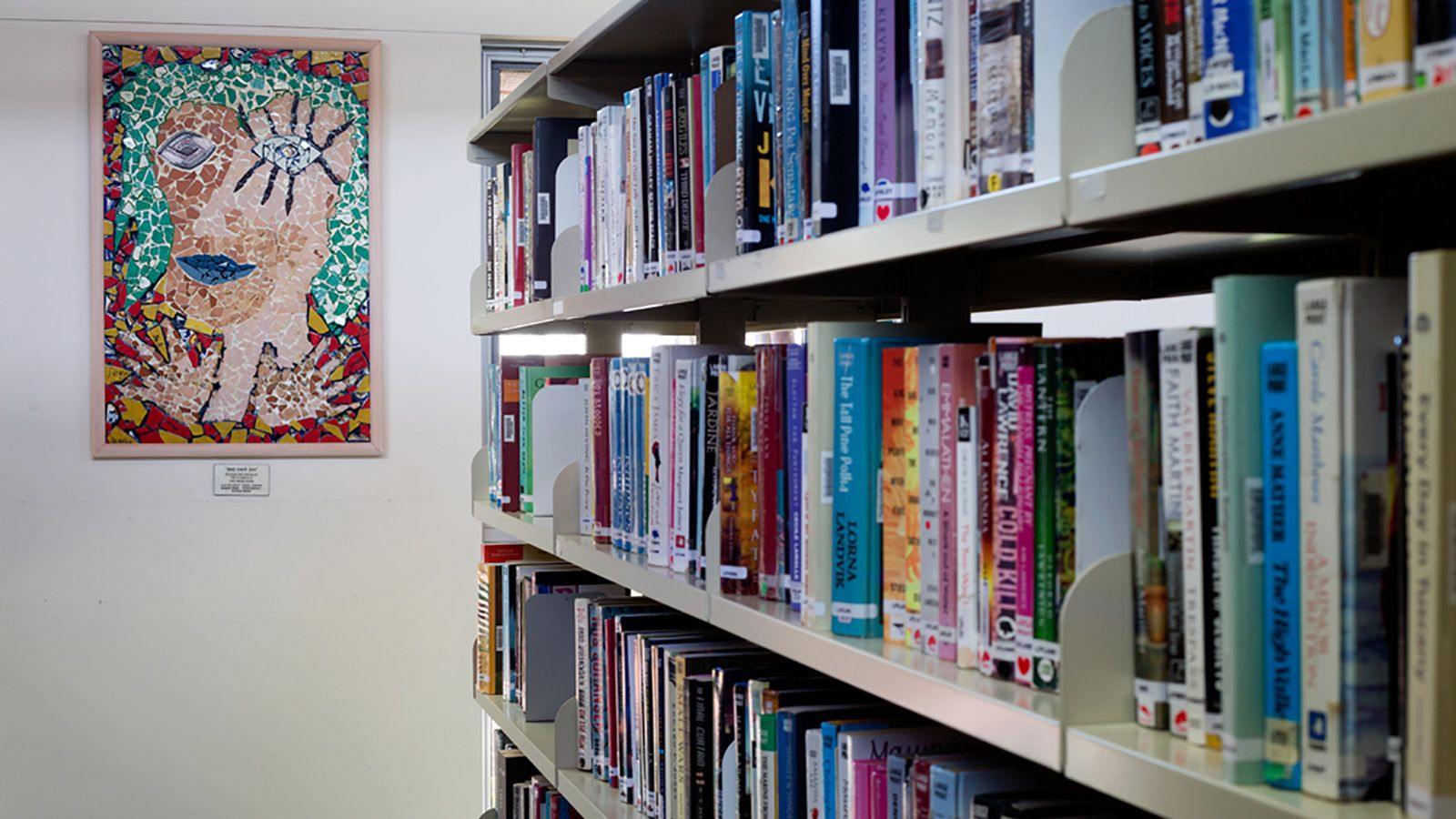 Library shelves with books banner image