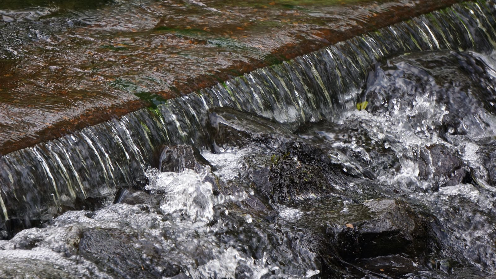 Stormwater runoff pooling banner image