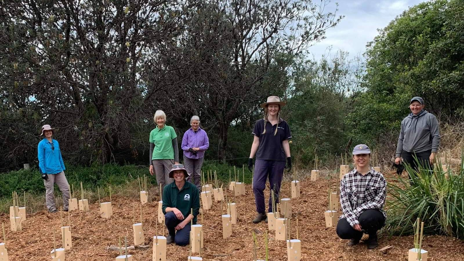 Group of Landcare volunteers standing among newly planted plants