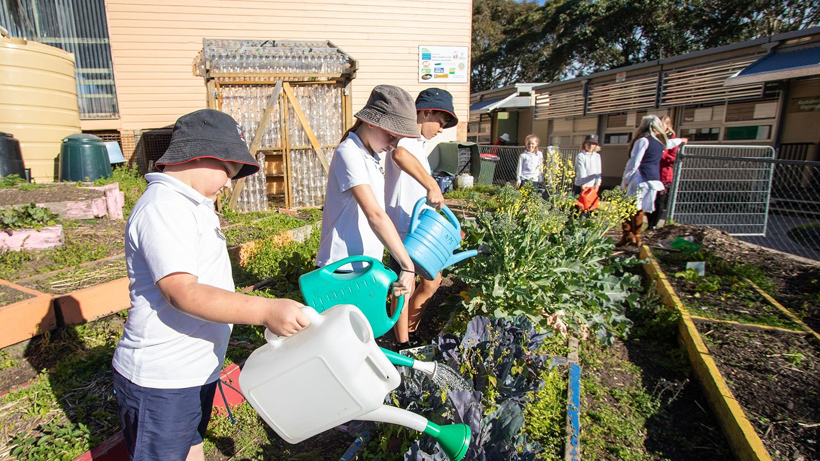School students using watering cans on a garden bed banner image
