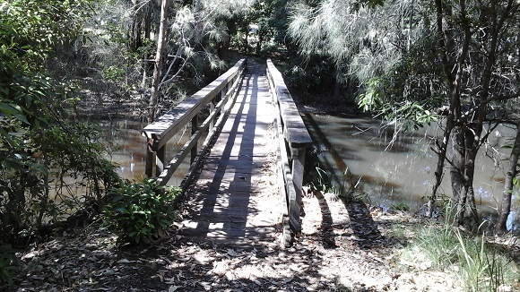 A footbridge stretches above the water through the forest